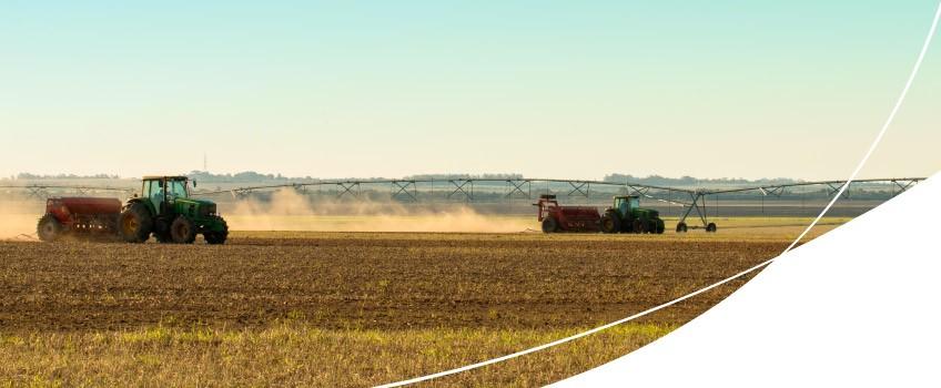 irrigação na lavoura de arroz
